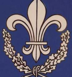 Le mouvement de la Jeunesse royaliste, les prémices de l'Action française