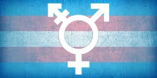 Transidentité : quand l'offre crée la demande